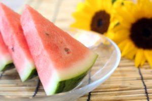 夏のイメージ 西瓜と向日葵 すだれ_s